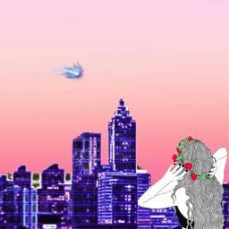 estrellafugaz cielorosado ciudadmorada