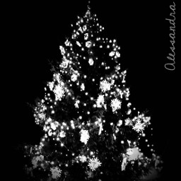 photography blackandwhite christmas wishes myblackandwhitemood