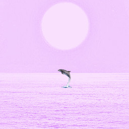 freetoedit candyminimal pink dolphin