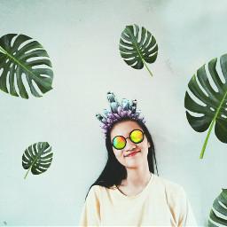 freetoedit back tropical krystal glasses