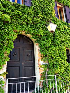 green nature tuscany