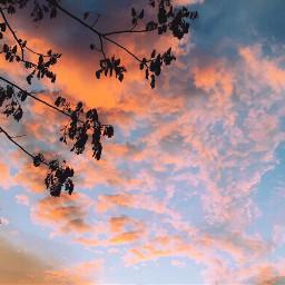 summer sunset iphone p