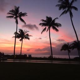 freetoedit sunset hawaii gorgeous