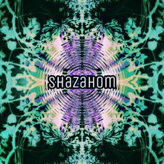 shazahom1 mirrormania mirroreffect mirrorart ilusion