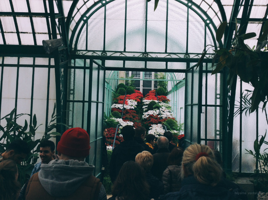 #FreeToEdit #travel #interesting #greenhouse #people #random #crowd #photography #beautiful #green #belgium #brussels #lovely #photo #colorful #picsart 😊