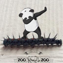 freetoedit meownself catipillar dab panda
