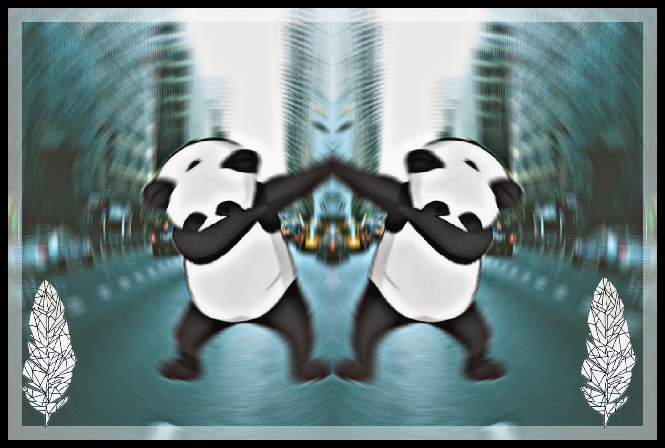 Dap Panda Cute Tumblr Freetoedit
