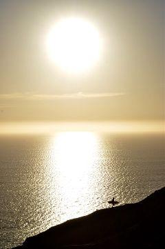 photography surfer sandiego california torreypines