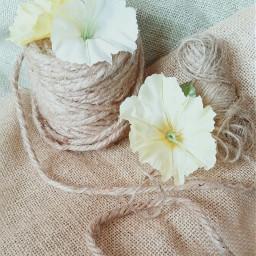 textiles freetoedit remixit textile burlap