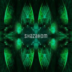 shazahom1 illusion abstract mirrorart mirrormania