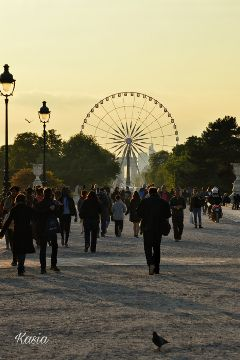 photography travel paris france people