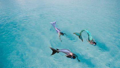 freetoedit mermaid tails replace feet