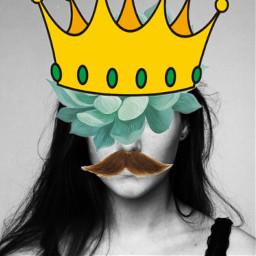 myconstruction freetoedit mustachesticker crownsticker